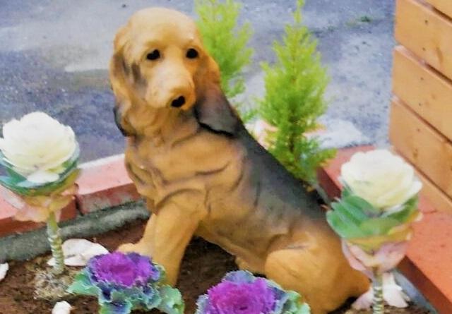 加須市のペット葬儀・ペット火葬のご相談はペットファミリー花畑まで